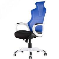 Inkagu J21-M106 White Frame with Blue Mesh Gaming Chair (Nylon)