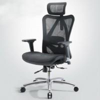 Inkagu M57-1 Mesh Executive Chair Black Mesh