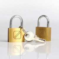 TravelBlue 021 2x Padlock 20mm