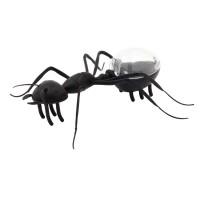 PRS Solar Energy (Ant)