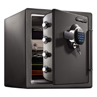 SentrySafe Fire and Water Proof Safe (STW123GDC)