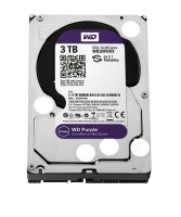 WD Purple Surveillance HDD (3TB)