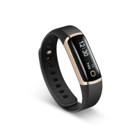 LifeSense Band 2S Fitness Tracker (Gold)
